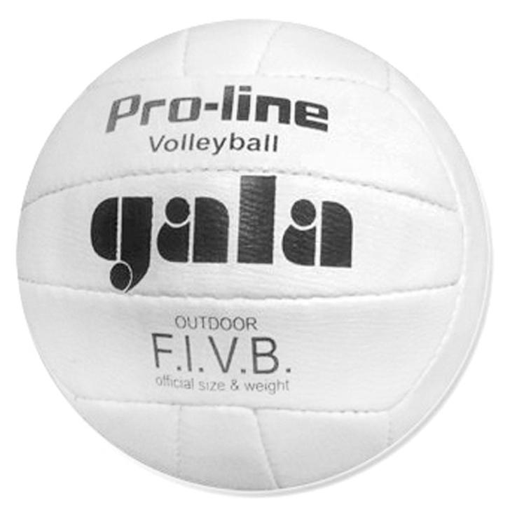 Мяч в/б GALA пресс.кожа шитый 05009